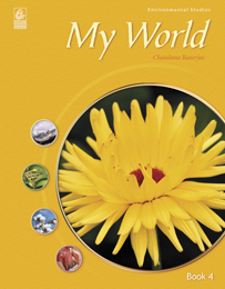 My World 4